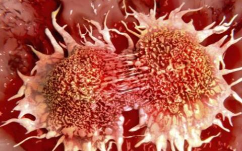 Prevenció del càncer